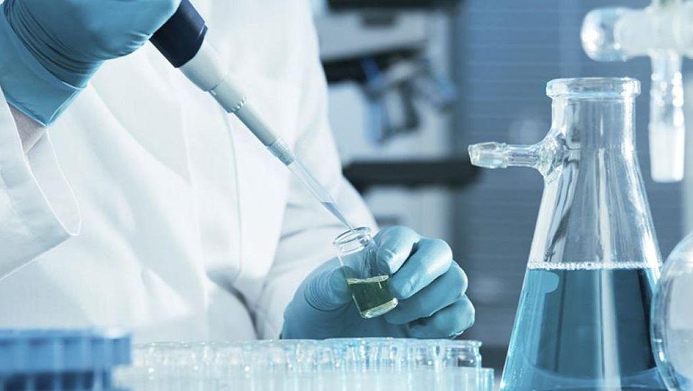 trasplante de células madre hematopoyéticas