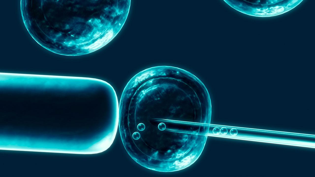 tratamiento con celulas madres para espina bifida